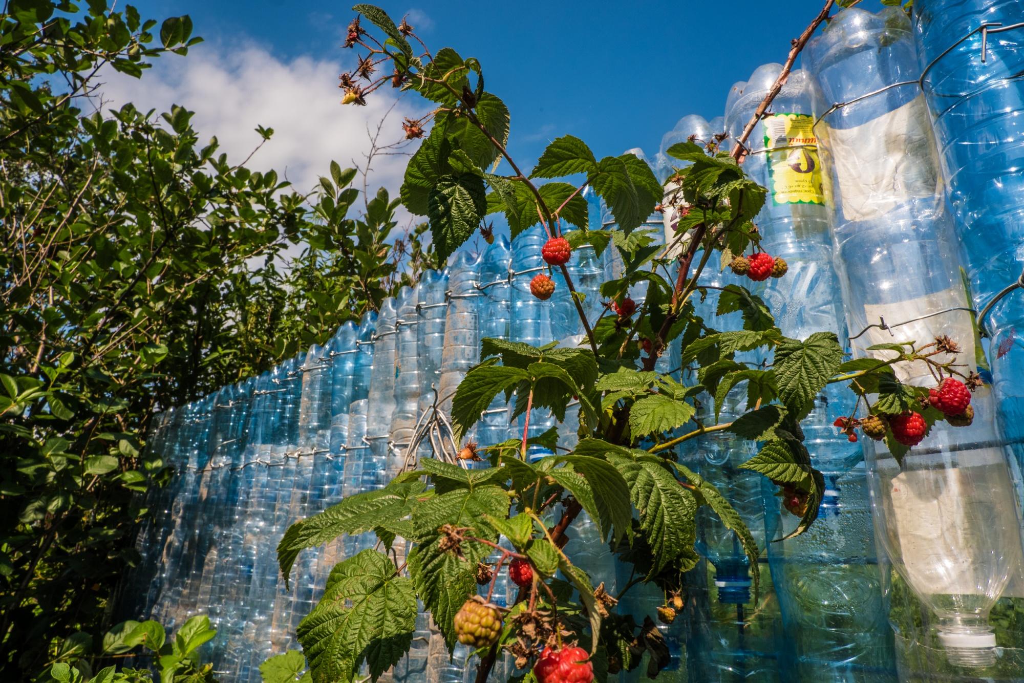 Король полторашек: новосибирец построил стену из пластиковых бутылок из-под «Карачинской»