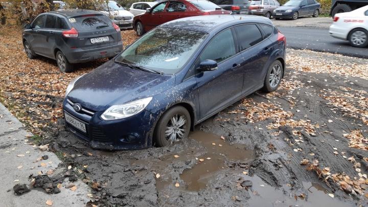 Добровольно платит только каждый третий: за год мэрия заработала на гряземесах 15 миллионов рублей