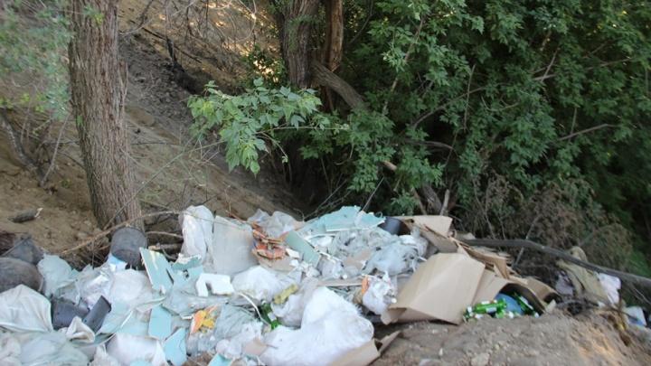 «Проблему лишь усугубили»: балку на севере Волгограда превратили в гигантскую стихийную свалку