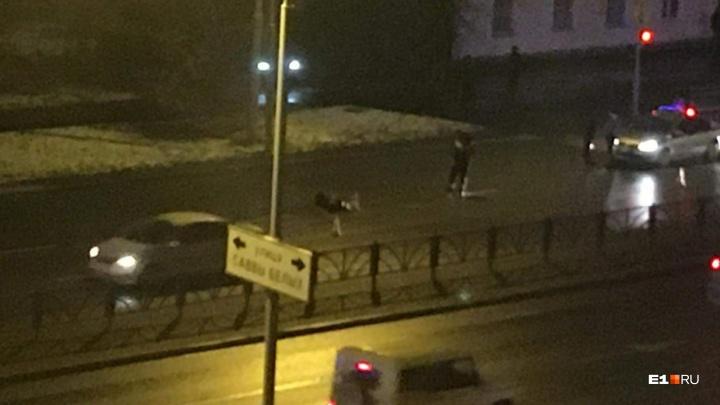 На ЛуганскойLada Priora насмерть сбила пешехода