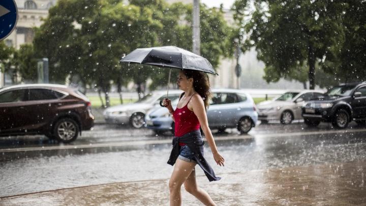 Тепло и сыро: в выходные Новосибирск зальёт летними дождями