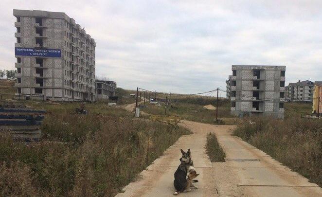 Глеб Никитин предложил Сбербанку достроить ЖК «Новинки Smart City»