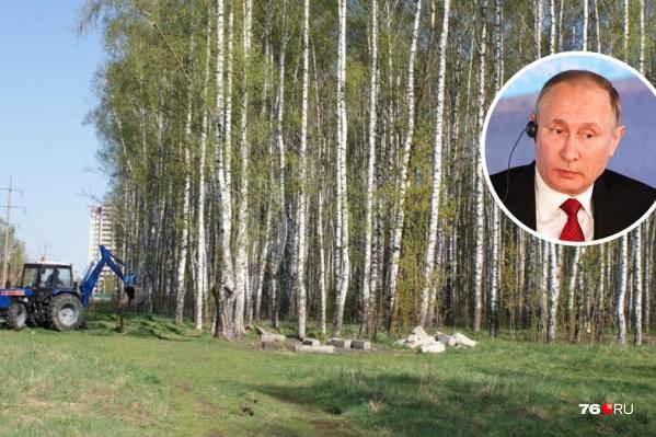 На прямую линию с Путиным общественники отправили просьбу спасти Павловскую рощу