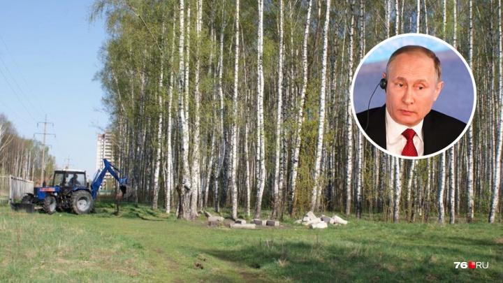 «Спасите национальное достояние»: ярославцы попросили Владимира Путина остановить стройку в парке