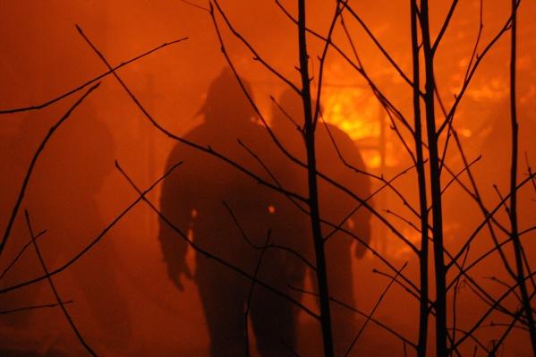 После того как жильцы выбежали из квартиры, пожарные потушили огонь