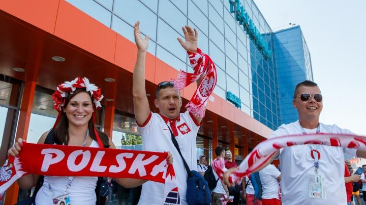Из Волгограда уехали самые громкие фаны из Польши