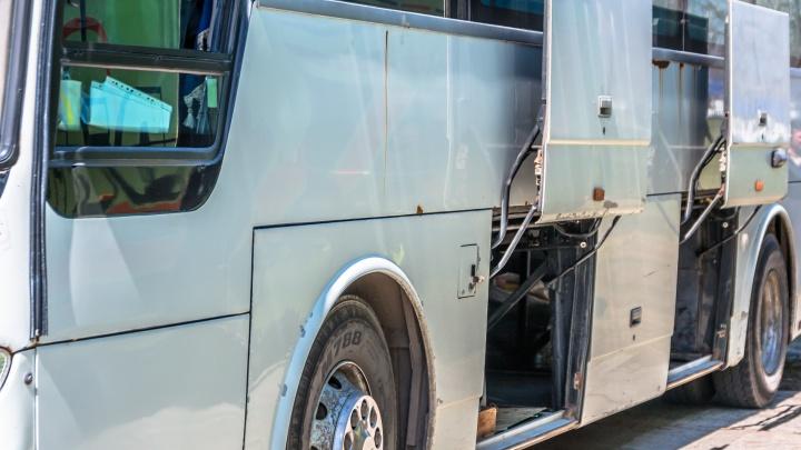 Футбольные болельщики из Колумбии приедут в Самару на автобусах