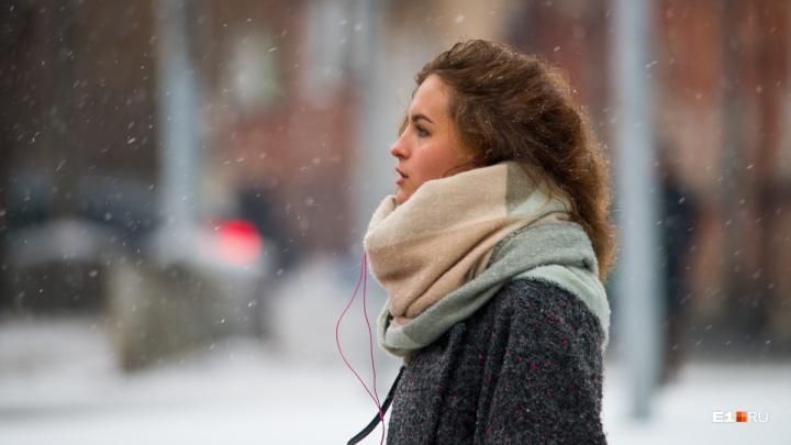 Дело к весне: всю неделю в Екатеринбурге будет постепенно теплеть