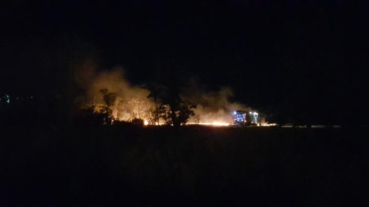 Пожарным снова пришлось тушить овраг рядом с ТРК «Комсомолл» в Волгограде