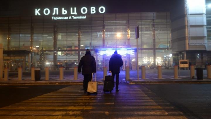 Superjet столкнулся со стаей птиц: подробности аварийной посадки самолёта в Кольцово