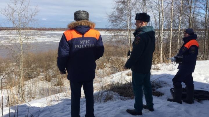 Просыпайся, Северная Двина: в Архангельской области ледоход достиг Красноборского района