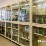 Мумия сотрудницы и коллекция древних черепов. Экскурсия по музею анатомии Пермского медуниверситета