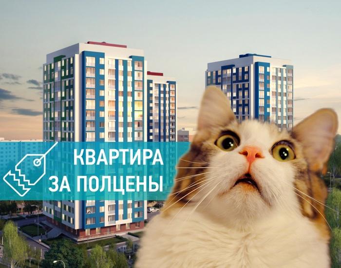 Как купить квартиру в новостройке за полцены
