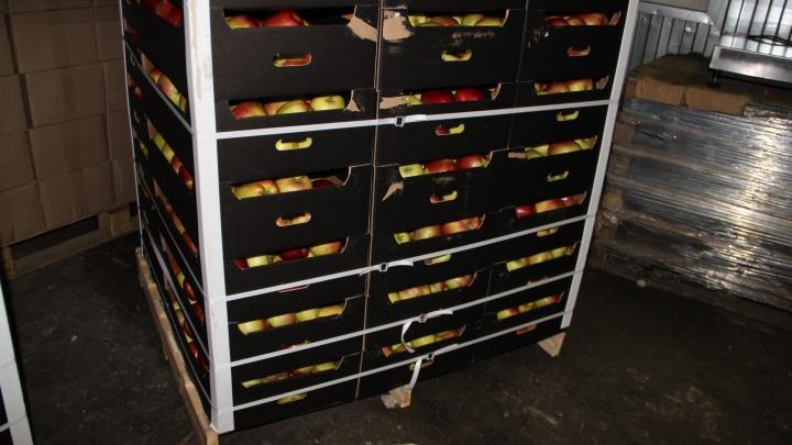 В Екатеринбурге уничтожили 20 тонн польских яблок