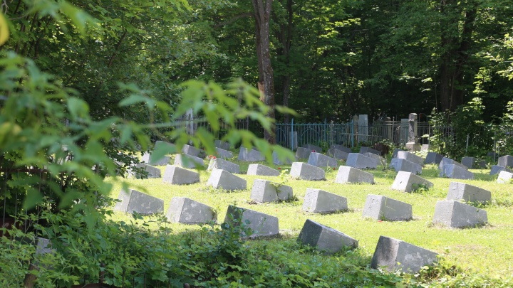 Дело о забытых красноармейцах: о том, кто похоронен на Курочкиной горе и заброшен на Сергиевском
