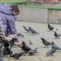 Рак как тест на зрелость: 74.ru узнал у психотерапевта, как пациенту пережить серьёзный диагноз