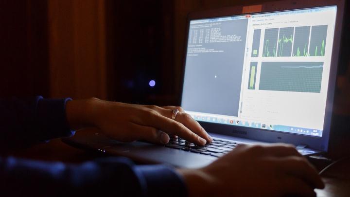 Криптовалютчики и целительницы: две волгоградки отдали мошенникам 585 тысяч рублей