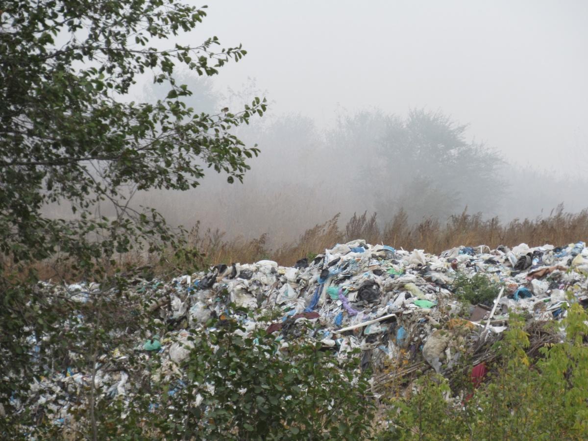 Роспотребнадзор нашёл признаки того, что мусор на несанкционированной свалке сжигали