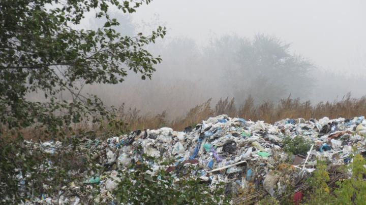 Макушинский район должен до 2020 года придумать, куда вывозить мусор