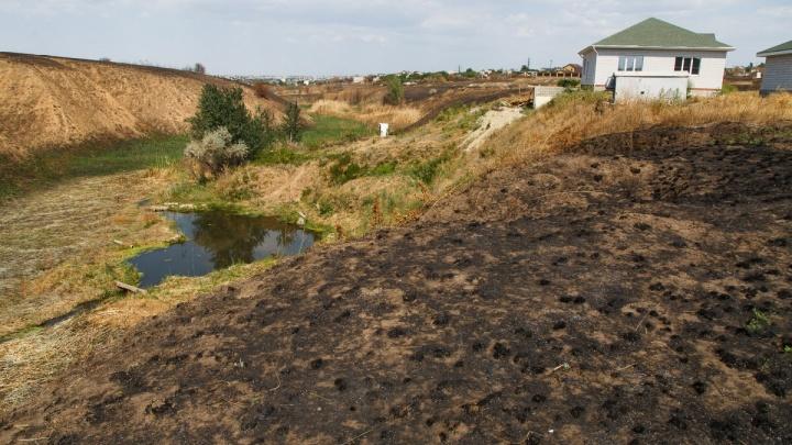 МЧС: Волгоградской области угрожают лесные пожары