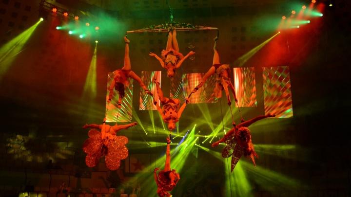 В Тюмень приезжает цирк Юрия Никулина: увидеть шоу легендарного коллектива стоит всем тюменцам