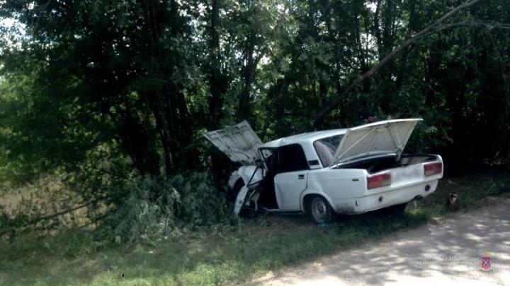 В Волгоградской области водитель вылетел с дороги на обочину и погиб после столкновения с деревом