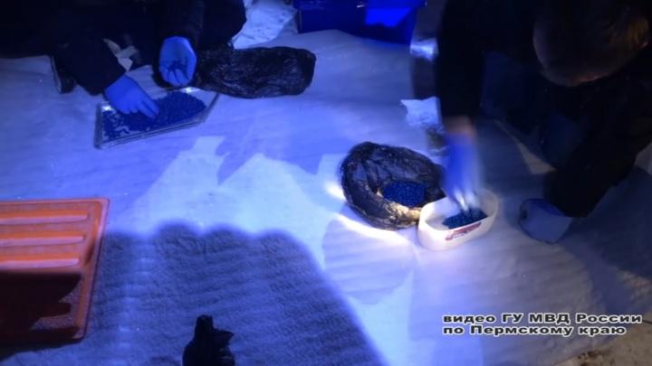 В Перми лидер банды наркодилеров получил 13 лет колонии и штраф