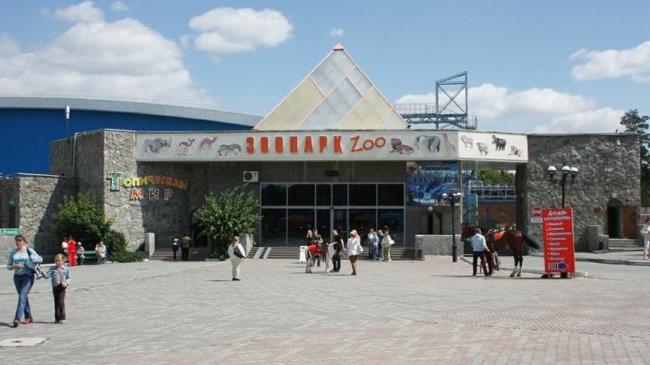 Вход в зоопарк вместо дельфинария: власти прояснили суть стройки в челябинском бору