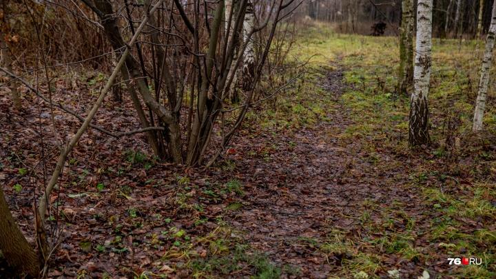 В Ярославле на улице нашли труп мужчины: пойман предполагаемый убийца