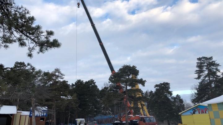 Без ёлки и всего с двумя горками: челябинцев разочаровала подготовка к празднику в парке Гагарина