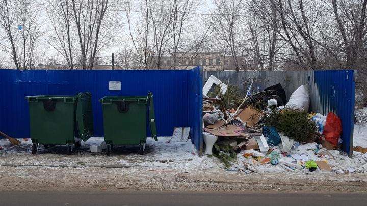 В Госдуме просят Бочарова ввести режим ЧС: Волгограду грозят эпидемии из-за гор мусора и крыс