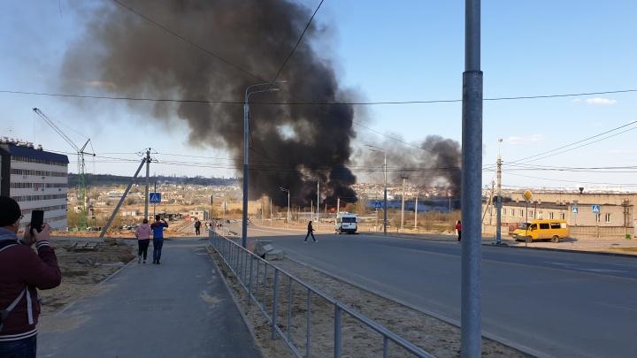 «Водители отогнали свои машины»: разгоревшийся камыш затянул Волгоград облаком дыма