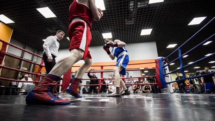 В Екатеринбурге стартовал второй сезон Лиги бокса Урала и Сибири