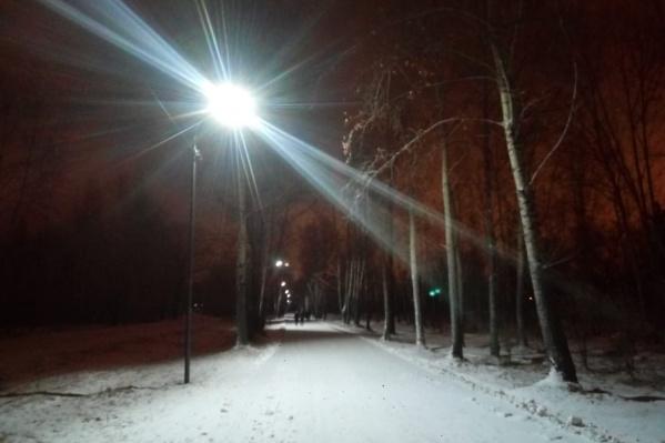 В мэрии заверили, что «в парке станет светлее»