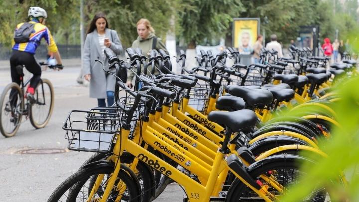 Садись и езжай: Волгоград докатился до общественного велотранспорта
