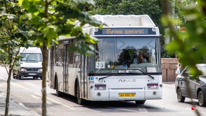 В День города общественный транспорт Волгограда объявит бесплатный проезд