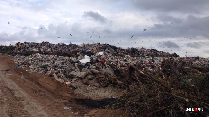 Активисты из Левенцовки обратились в суд, чтобы из их района убрали мусорный полигон