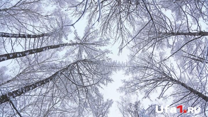 Синоптики рассказали о погоде на 20 февраля