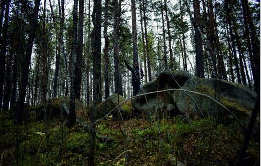 Недалеко от горы Светлой нашли две стоянки