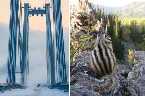 У красивых кадров фотографов порой очень необычные истории