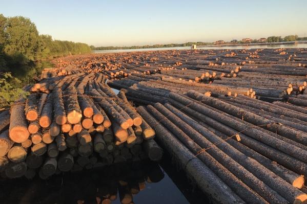 Мост позволит наладить поставку дров населению в посёлок Пачиха, а также переправа поможет содержать дороги в этом населённом пункте силами спецтехники холдинга «Титан»