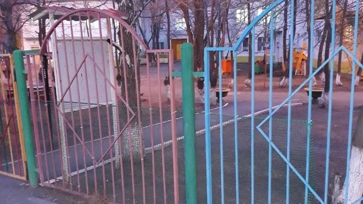 Воспитательница мальчика, проглотившего шарик в тюменском детсаду, жалуется на ход следствия
