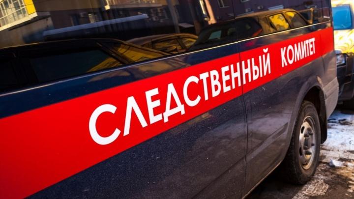В Каргапольском районе умер полуторамесячный ребенок