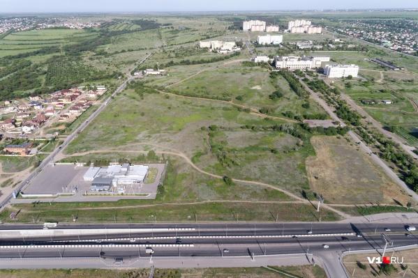 За парк у ВолГУ высказались 403 человека, а за больницу — 2400