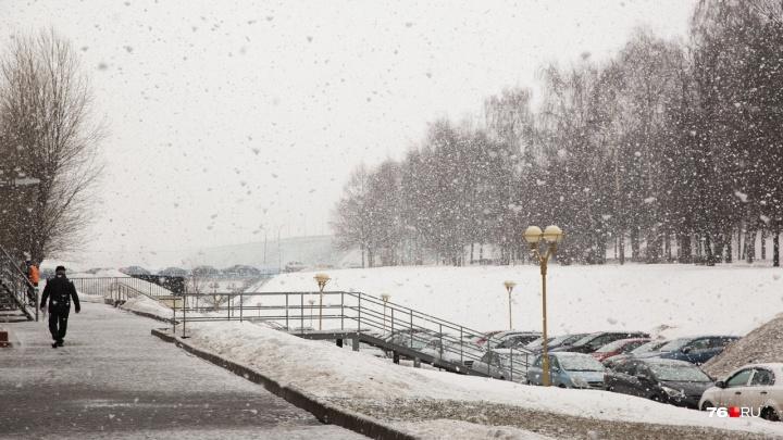 Гололёд, мокрый снег и сильный ветер: какая погода будет в конце ноября в Ярославле