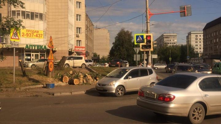Ради расширения выезда на Свободный с Маерчака вырубили деревья