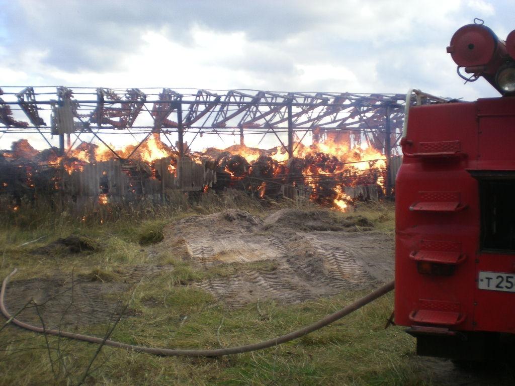 Практически 200 тонн сена подожгли дети под Выксой