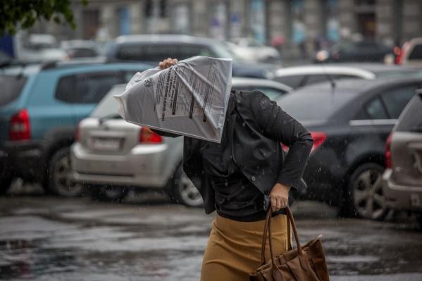 Во вторник, 8 мая, в Новосибирске ждут проливной дождь