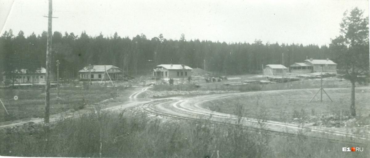 Общий вид строящегося поселка энергетиков на Большом Конном