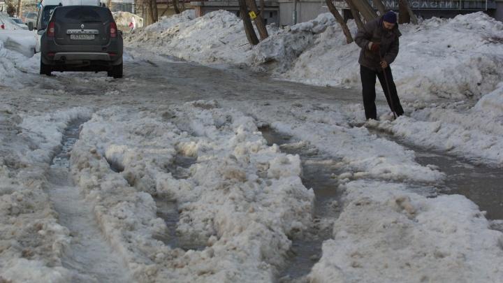 Морозы слабеют: к концу недели в области будет до +2 градусов